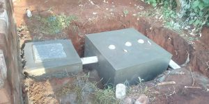 The Best Biodigesters in Kenya